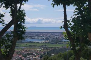 Villa Tre Fontane, Дома для отпуска  Massarosa - big - 5