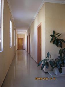 Отель Рица - фото 8
