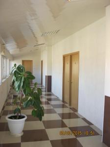 Отель Рица - фото 12