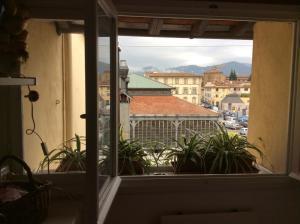 Terrazza su Sant'Ambrogio a Firenze