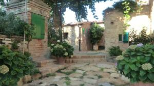 B&B Al Vecchio Forno, Bed and breakfasts  Montepulciano - big - 11