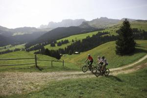 Crioli Dolomiti Lodge, Ferienwohnungen  Niederdorf - big - 20