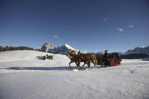 Crioli Dolomiti Lodge, Ferienwohnungen  Niederdorf - big - 21