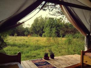 Glempings Klaukas, Campsites  Sigulda - big - 4