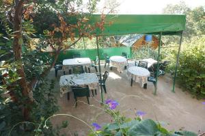 Voronin Guest House, Vendégházak  Gaszpra - big - 27