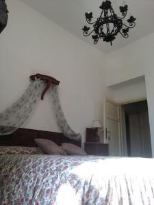 Casa Simonetti, Bed and Breakfasts  Torre del Lago Puccini - big - 21