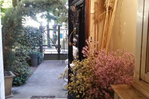 Casa Simonetti, Bed & Breakfast  Torre del Lago Puccini - big - 25
