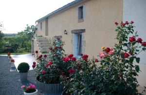 Gite Rural Le Balloir, Holiday homes  Nueil-sur-Layon - big - 8