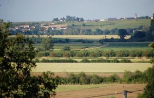 Gite Rural Le Balloir, Holiday homes  Nueil-sur-Layon - big - 11