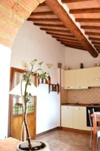 The Little Arch of Memory, Apartmány  Montepulciano - big - 51