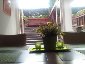 Bed & Breakfast Via Gladiola
