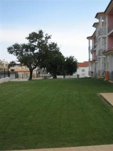 Apartamento Rosa Jardim, Apartmány  Albufeira - big - 18