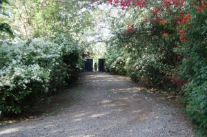 Meru House Lekisilai, Penzióny  Arusha - big - 35