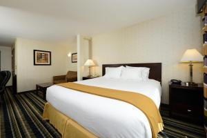 Holiday Inn Express Elk Grove Central-Sacramento, Hotels  Elk Grove - big - 10