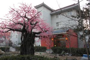 Three Kingdoms Dingsheng Cultural Boutique Hotel, Шуньи