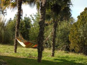 B&B L'Albero della Vita, Bed and breakfasts  Borgo Pantano - big - 20