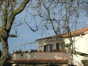 B&B L'Albero della Vita, Bed and breakfasts  Borgo Pantano - big - 9