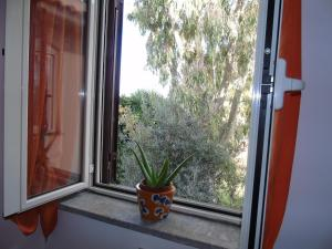B&B L'Albero della Vita, Bed and breakfasts  Borgo Pantano - big - 12
