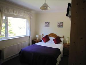 Ashe's B&B, Bed and Breakfasts  Dingle - big - 43