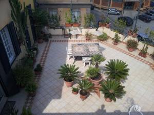 Casa Franz, Penzióny  Tropea - big - 36