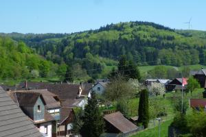Schwarzwald Domizil Uhlsberg