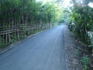 Pondok Salacca