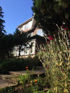 Ferien Suite Braunlage, Apartments  Braunlage - big - 5