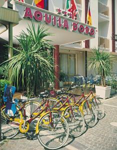 Hotel Aquila D'Oro, Szállodák  Misano Adriatico - big - 42