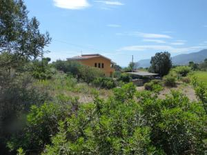 Villa Maria, Дома для отпуска  Тертения - big - 2