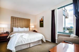 Executive Airport Plaza Hotel, Hotels  Richmond - big - 8