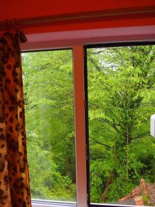 Гостевой дом Бамбучок - фото 10