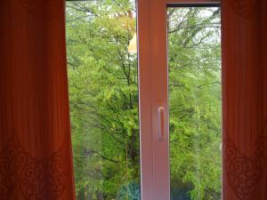 Гостевой дом Бамбучок - фото 11