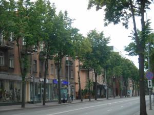Alis Apartment