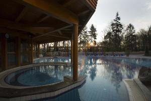 Danubius Health Spa Resort Hévíz, Rezorty  Hévíz - big - 50