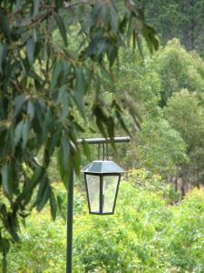 Ravensbourne Forest Chalets, Лоджи  Ravensbourne - big - 8