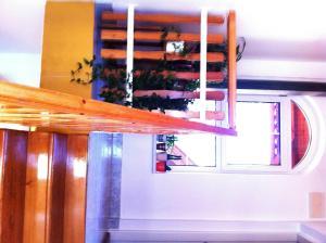 Hortenzia Apartmanház, Ferienwohnungen  Balatonlelle - big - 15