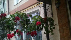 Guest House Gorkogo, Penzióny  Simferopol - big - 3