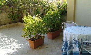 Casa vacanze Solemar