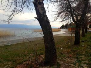 Ohrid House, Apartmány  Lagadin - big - 22