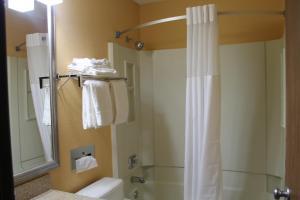 Quality Inn Hall of Fame, Hotel  Canton - big - 14