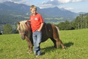Abelhof, Farmy  Schladming - big - 17