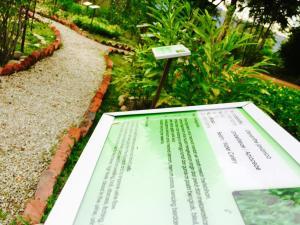 Langkawi Lagoon Resort Honeymoon Suite by De Lagoon, Üdülőtelepek  Kampung Padang Masirat - big - 91