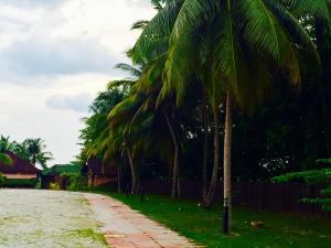 Langkawi Lagoon Resort Honeymoon Suite by De Lagoon, Üdülőtelepek  Kampung Padang Masirat - big - 58
