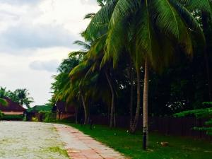 Langkawi Lagoon Resort Honeymoon Suite by De Lagoon, Üdülőközpontok  Kampung Padang Masirat - big - 58