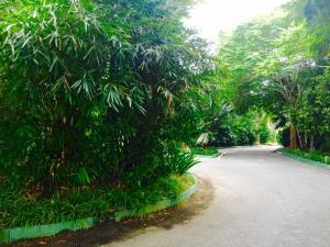 Langkawi Lagoon Resort Honeymoon Suite by De Lagoon, Üdülőközpontok  Kampung Padang Masirat - big - 103