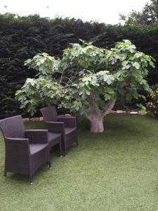 Villa Les Bambous, Виллы  Ванс - big - 14
