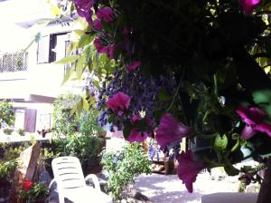 Bed and Breakfast Josy, Bed & Breakfast  Aymavilles - big - 24