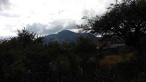Apart Cabaña La Unica, Лоджи  Capilla del Monte - big - 12