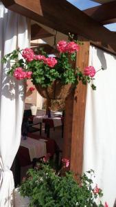B&B Zahir, Bed & Breakfasts  Castro di Lecce - big - 56