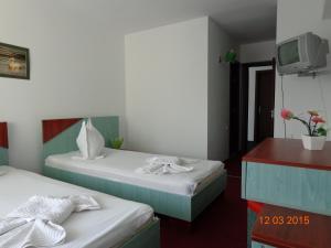 Hotel Cygnus